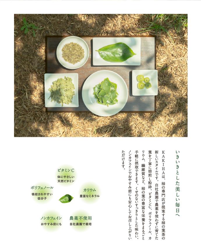 国産 柿の葉茶 柿の葉粉末